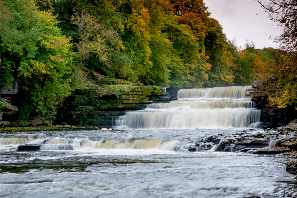 Aysgarth Falls Contact Numbers